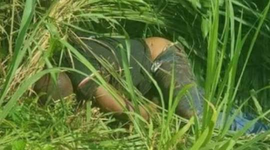 Tragic Photos!! Man Found Dead In A Bush With Legs And Hands Tied 6